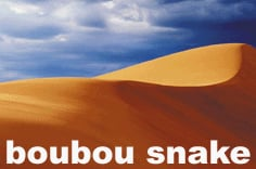 Thumbnail 1 for Boubou Snake Demo
